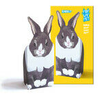 Rosie Flo Pop-Up Pet - Rabbit