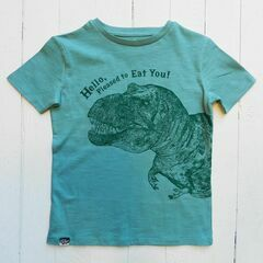 Lion of Leisure Dinosaur T-Shirt - Aqua