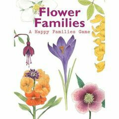 Flower Families - Happy Familes Game
