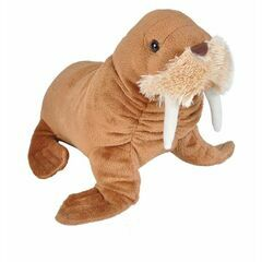 Walrus Cuddlekins Soft Toy - Small