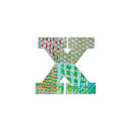 Djeco Wooden Letter X - Peacock