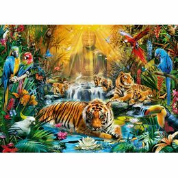 1000 pcs Land and Sea Gallery Puzzle by