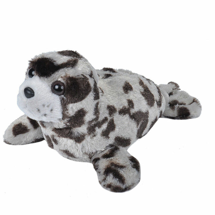 Harbour Seal Small