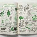 Hello Nature - Draw, Colour, Make and Grow additional 2