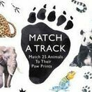 Match a Track - Animal Paw Print Matching Card Game additional 1
