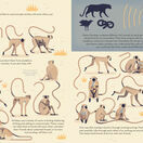 Mad About Monkeys additional 4