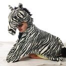 Wild & Soft Zebra Disguise additional 1